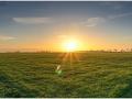 Sonnenaufgang Schafstädt