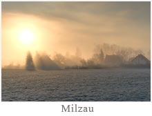 Milzau